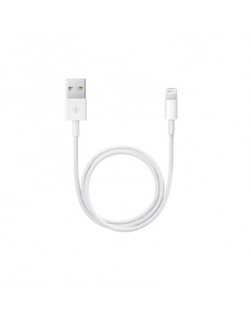 Cavo USB APPLE da 1mt iPhone 5/5c/5s/6/iPad Air Bulk